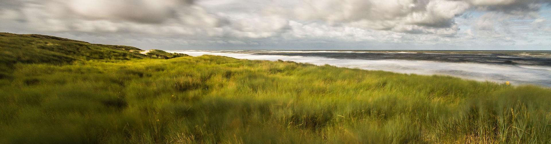 Blick auf dem Meer mit Wolken und Gräser