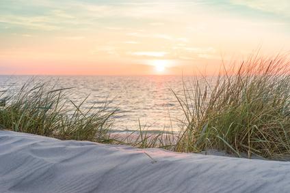 Dünen mit Blick auf dem Meer